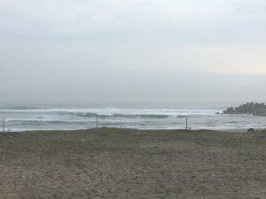 海に行って、波に飲まれたり(笑)