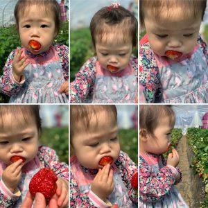 苺を🍓頬張る彩叶😋