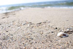 砂も綺麗🙆🏻♀️💡